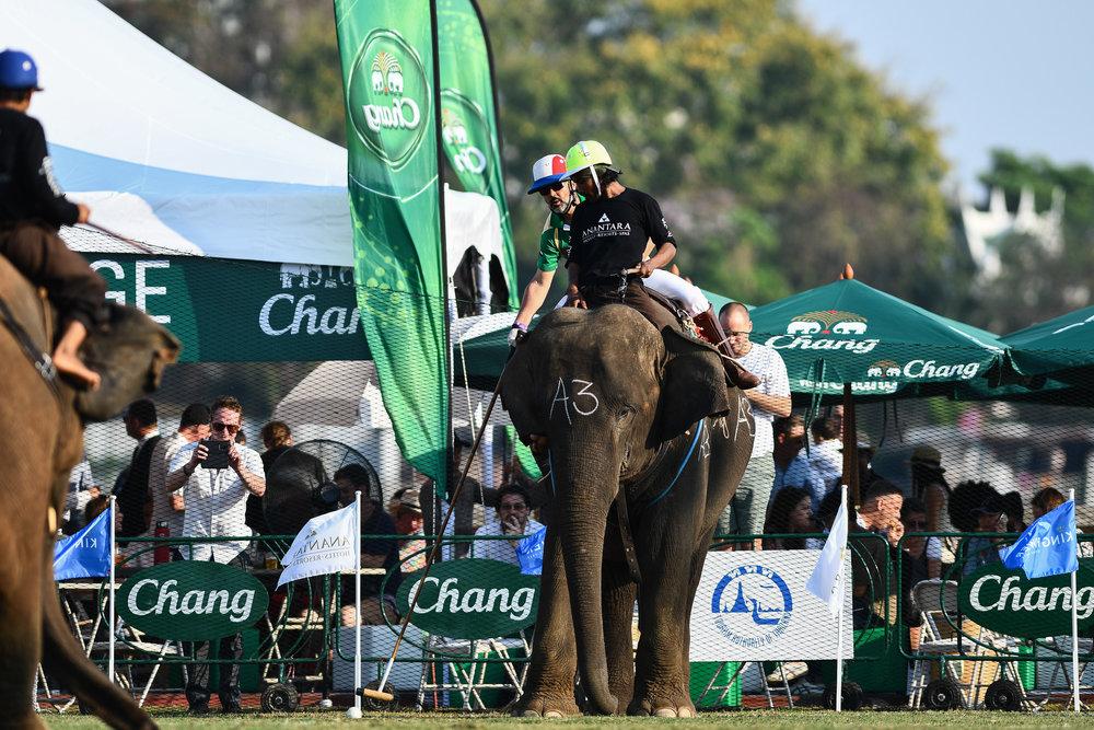BANGKOK, THAILAND - MARCH 14: Team Arabian Knights in action at the 2017 King's Cup Elephant Polo on July 14, 2017 at Anantara Riverside Bangkok Resort, Bangkok, Thailand. (Photo by: Naratip Srisupab/Thailand Photo SEALs Sports Photography)