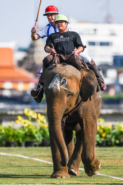 BANGKOK, THAILAND - MARCH 11: Team Citi Bank at the 2017 King's Cup Elephant Polo on March 11, 2017 at Anantara Riverside Bangkok Resort, Bangkok, Thailand. (Photo by: Naratip Srisupab/Thailand Photo SEALs Sports Photography)