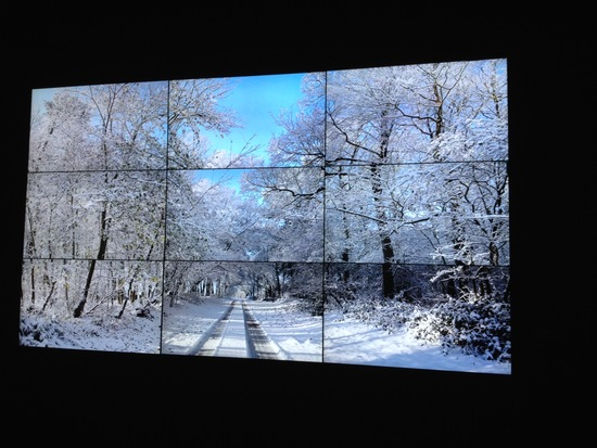 """Still from Woldgate Woods"" (November 26, 2010) is nine digital videos synchronized to comprise a single artwork. Photo by Spencer Michels/PBS NewsHour"
