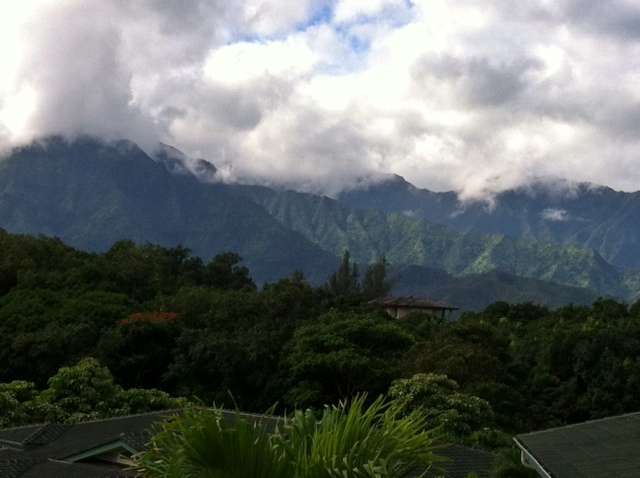 View of the pali, Kauai, 2014