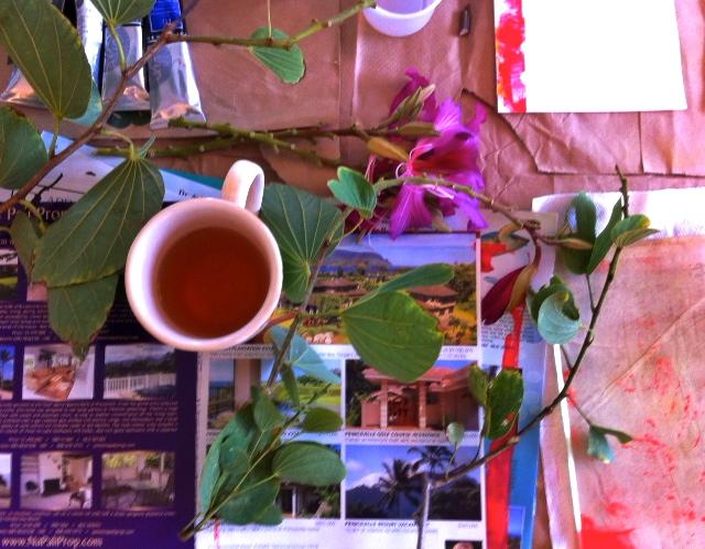 My impromptu studio, Kauai, 2014