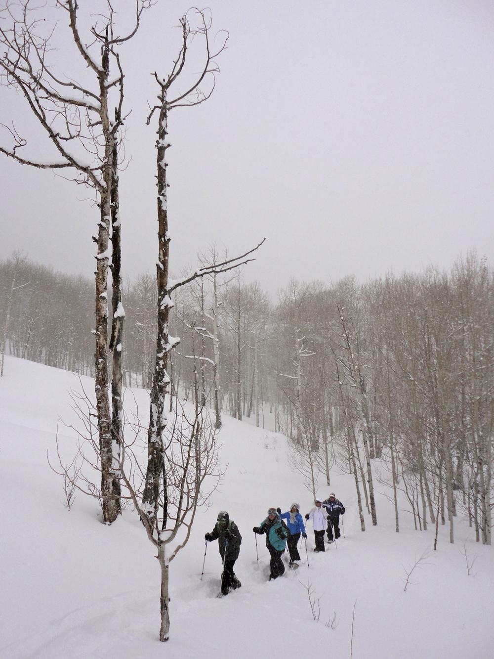 snowshoeing5.jpg