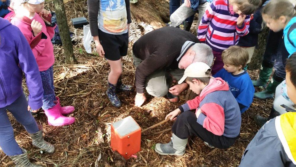 Testing a possum trap