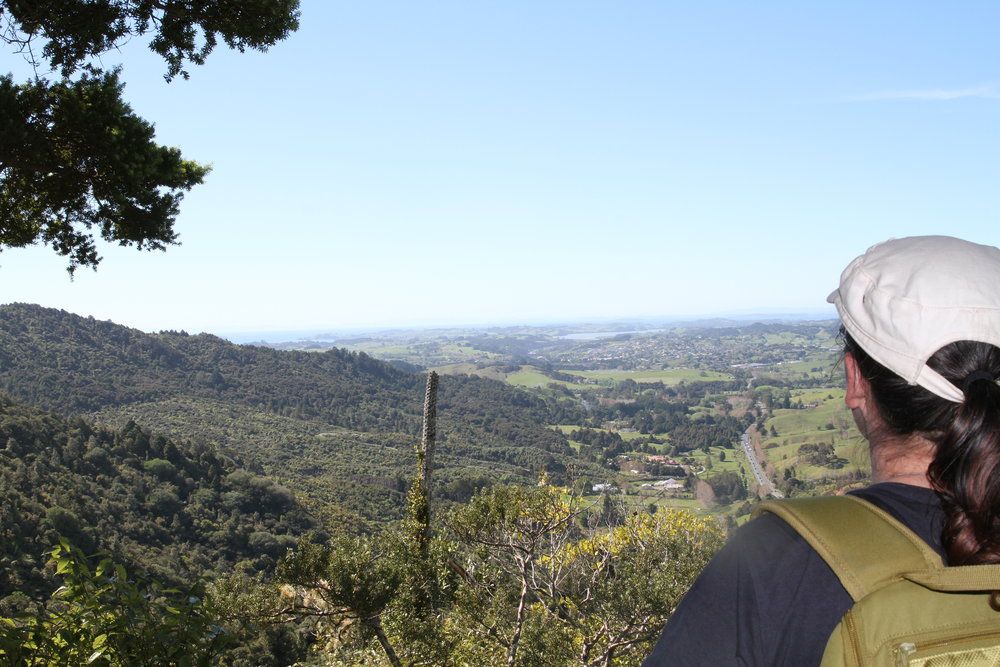 View from the Dome Valley Lookout down SH1 to Warkworth