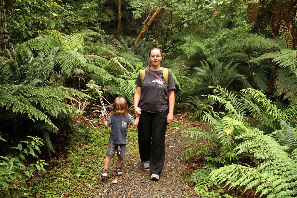 Walking through the bush at Opepe