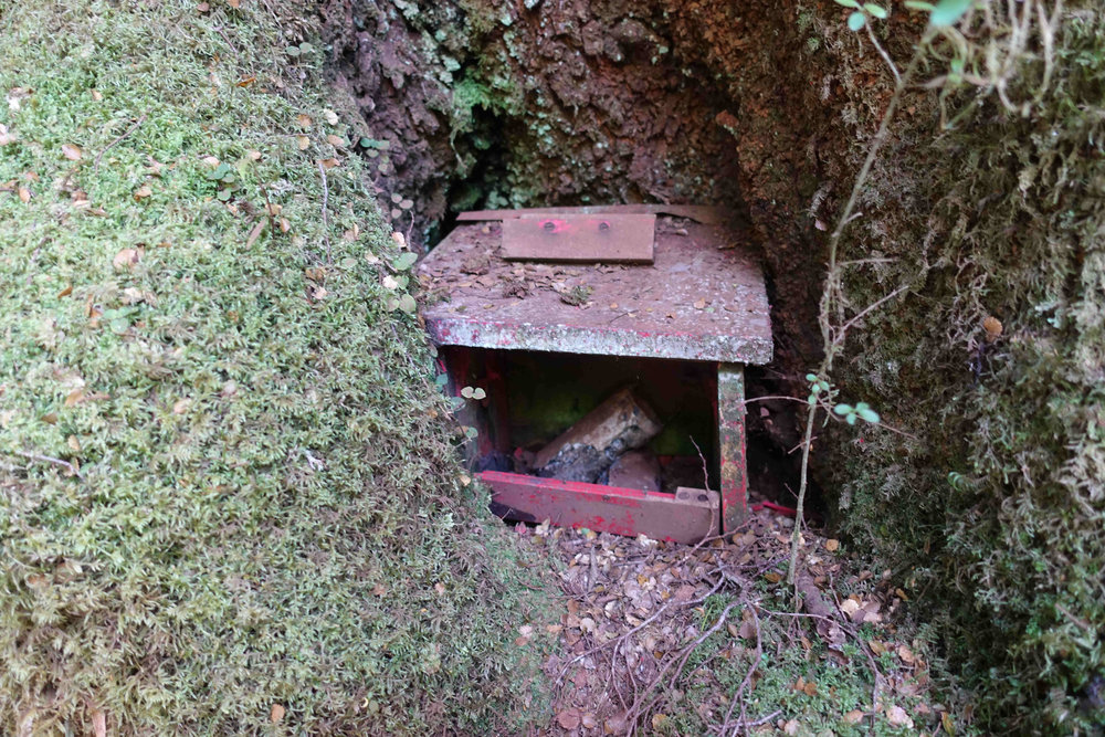 I did not except to find a red telephone box on the Milford Track
