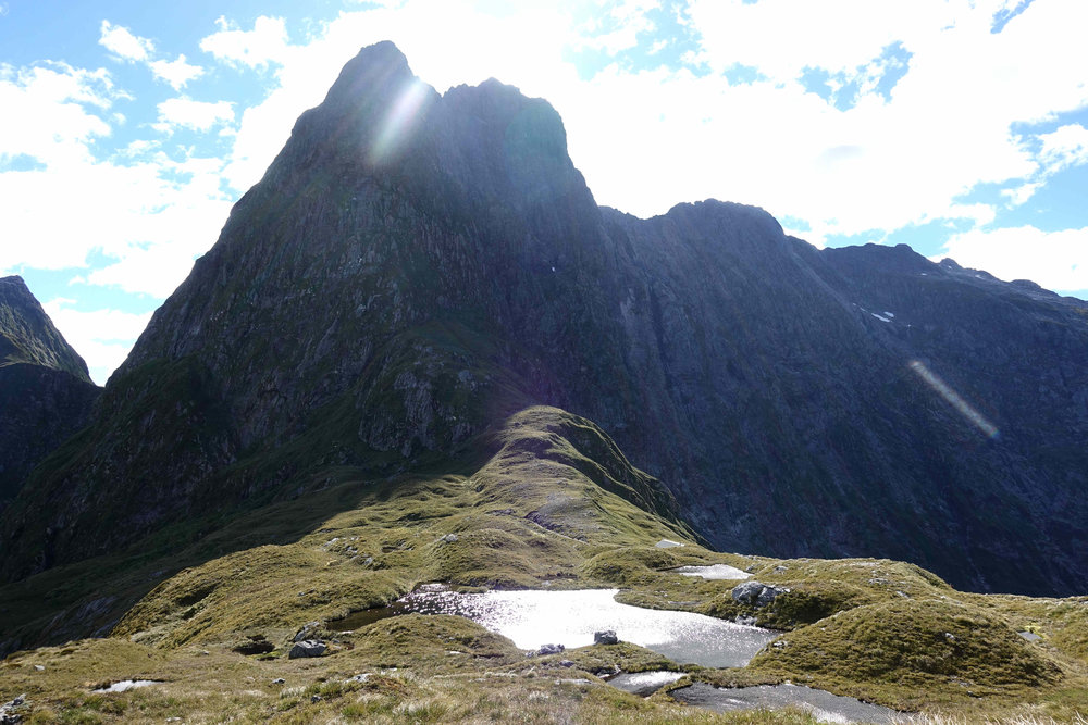 Mackinnon Pass on the Milford Track