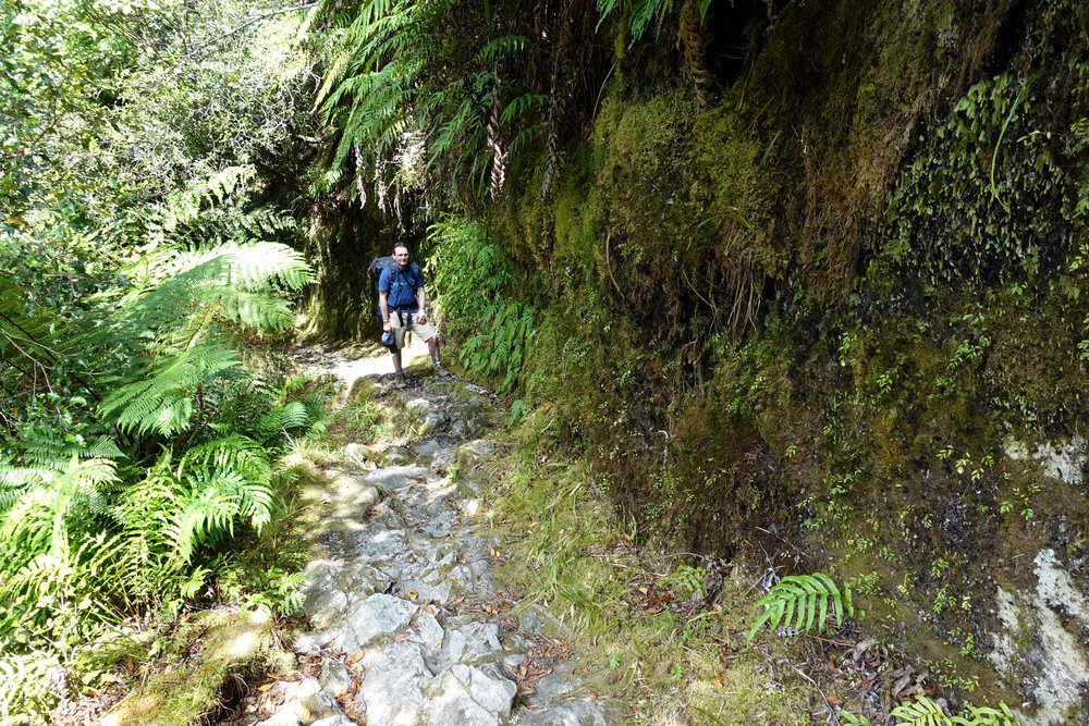 The oldest part of the Milford Track, cut from the cliff in 1898!