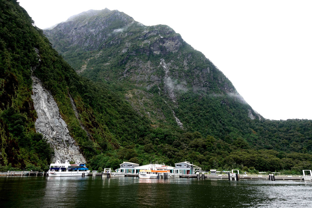 Milford Sound harbour