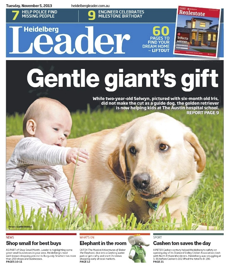 Front Page News.... - Founder of Kids Meditate, Kelly Mandemaker, was featured in the Heidelberg Leader for her commitment to Kids Wellbeing Initiatives in her community. Kelly founded the Austin Hospital's School 'Therapy Dog' program in 2012. The program still runs today.Pictured: Selwyn the Therapy Dog
