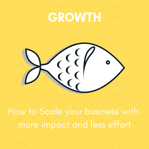 Module 6 - Growth - In this module, we are going to talk about how to scale your business. As you'll see, there are a lot of different things that can impact your scalability. But, we're going to break them down and talk about each of them individually