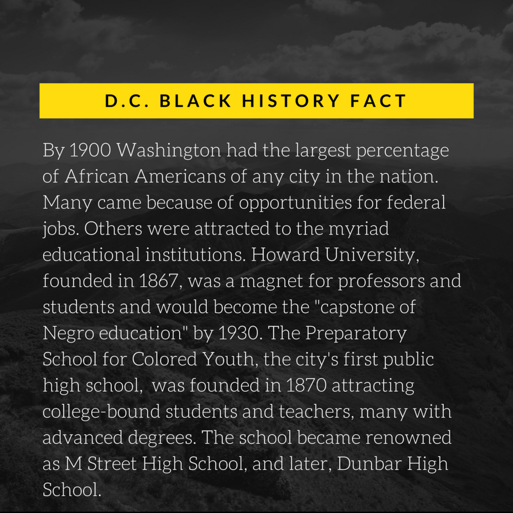 DC BHM Fact 2.png