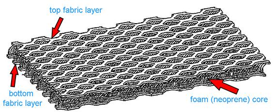 Neo_diagram.jpg