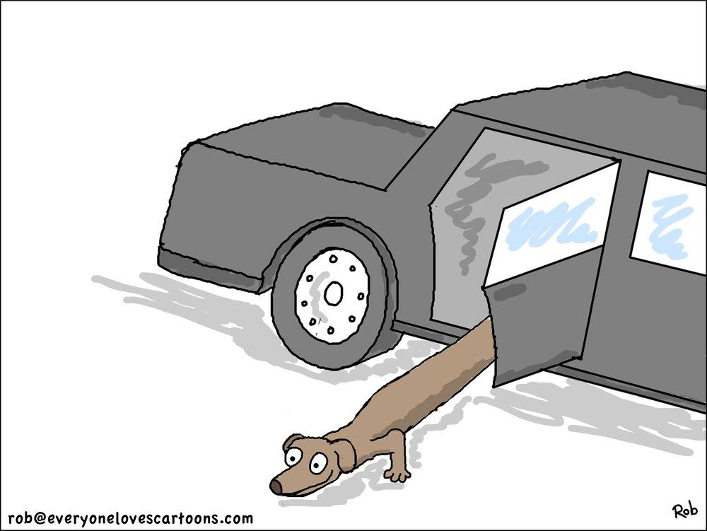 long-dachschund-cartoon