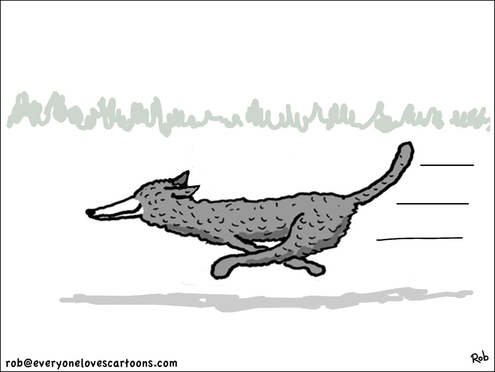 siberian-greyhound-cartoon