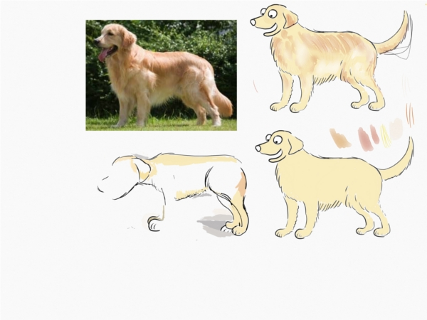 golden retriever sketches