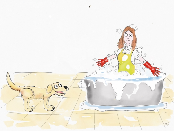 cartoon dog bath