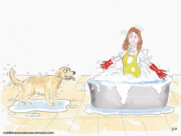 dog bath cartoon
