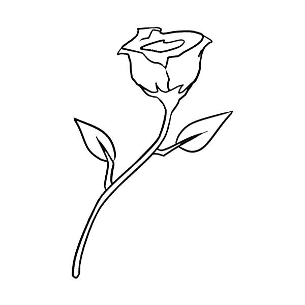 VAL-03 Rose