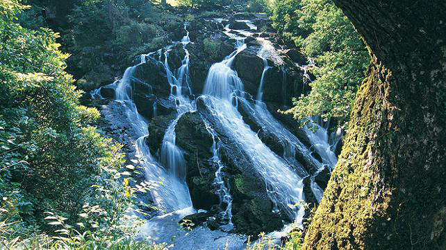 Swallow Falls within walking distance