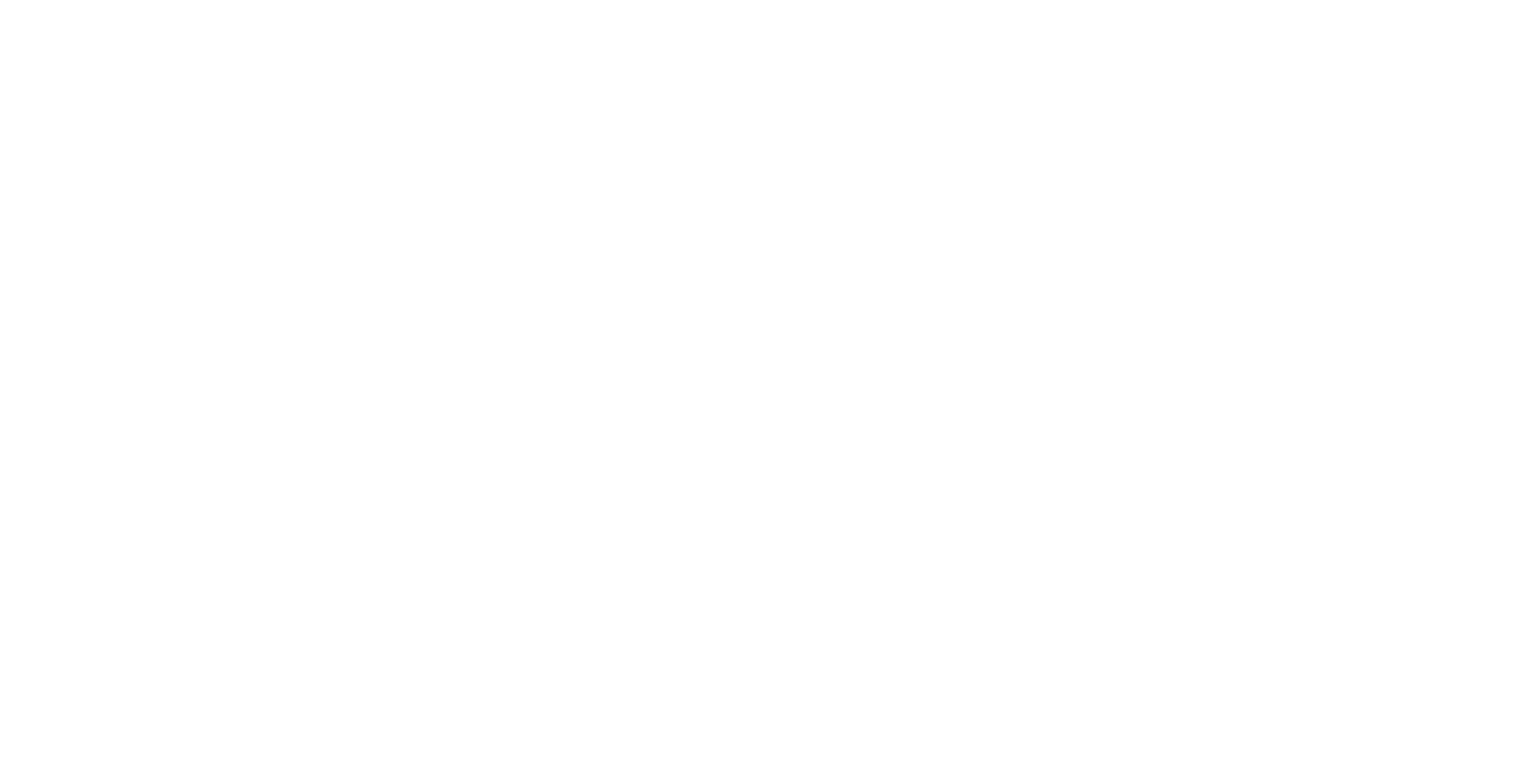 Schneuwly Coaching