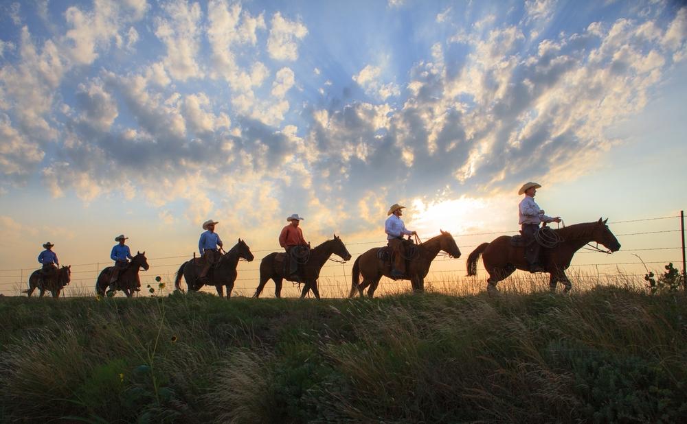 Cowboy Lineup-16.jpg
