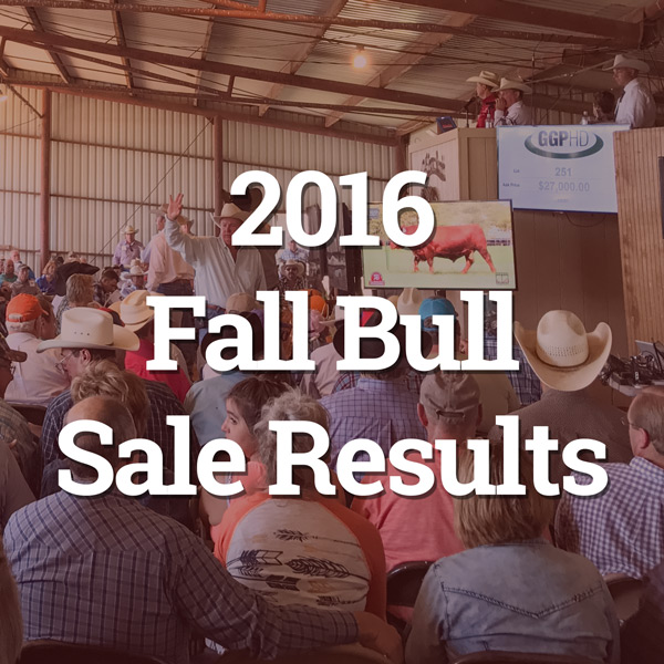 2016-fall-sale-results-button.jpg