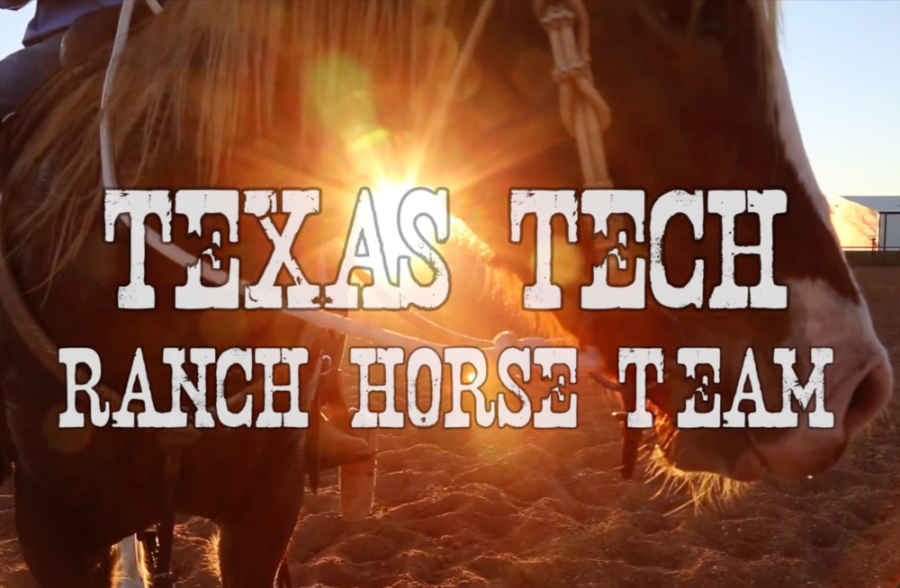 TEXAS TECH RANCH HORSE TEAM video.png