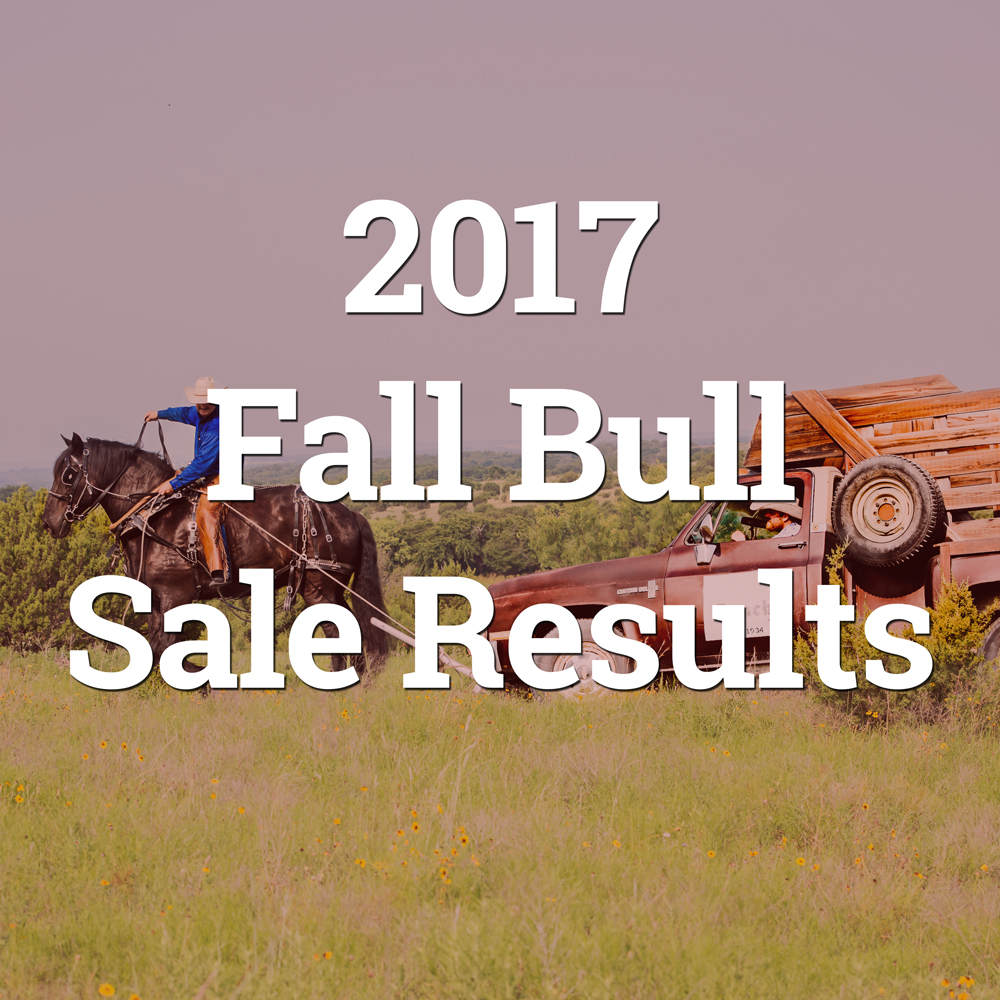 2017-fall-sale-results-button.jpg