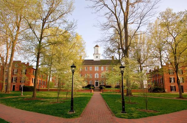 University of oregon honors college essay example