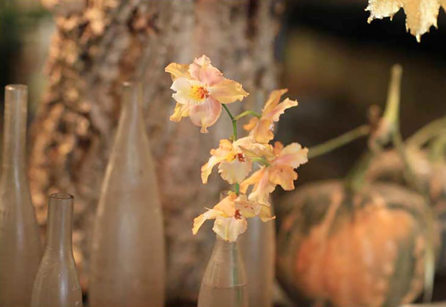 florali-Nfall12.jpg