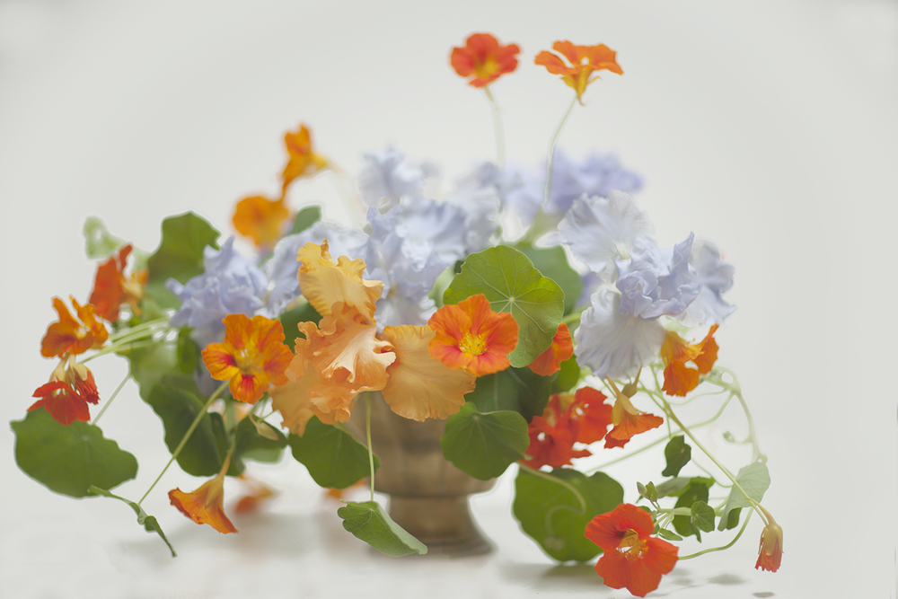 floraliss_spring1.jpg