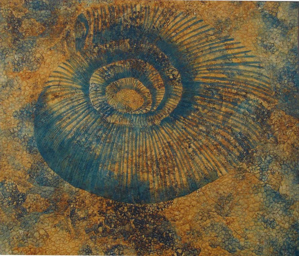 Ammonite Hiding