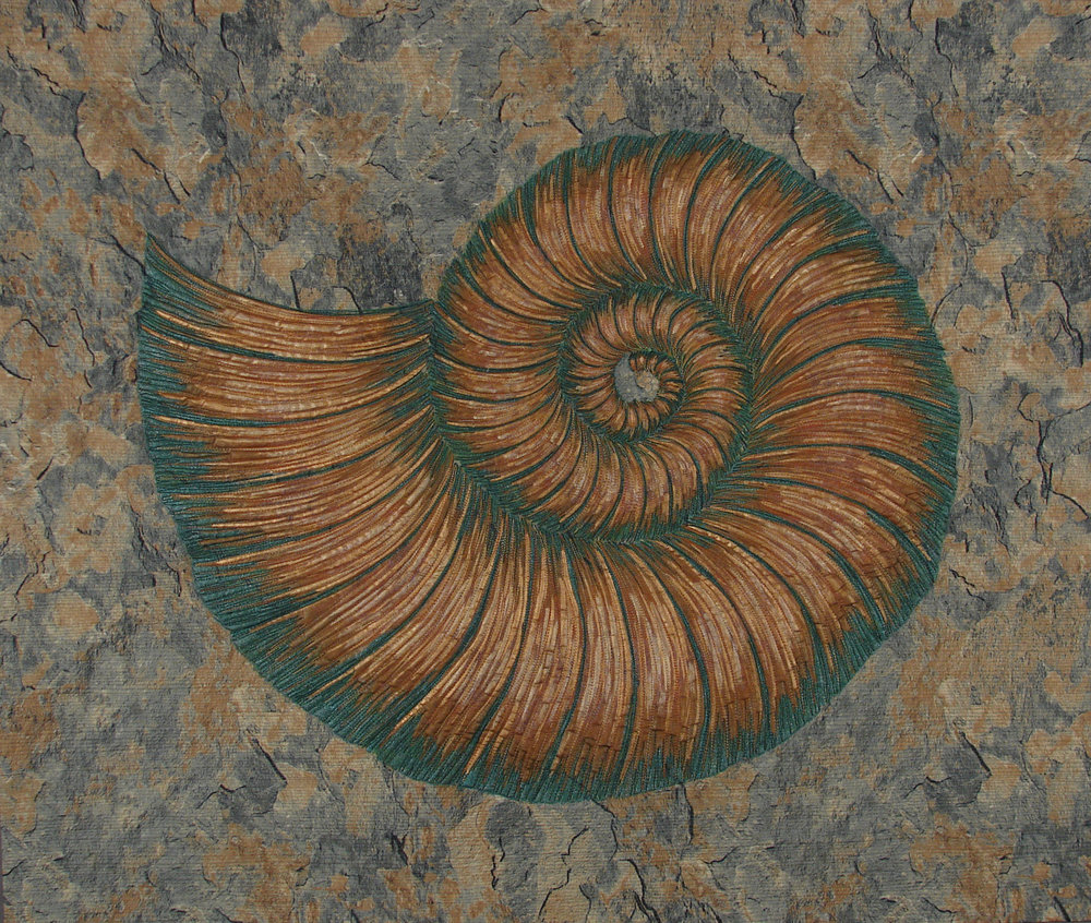 Ammonite in Marble III