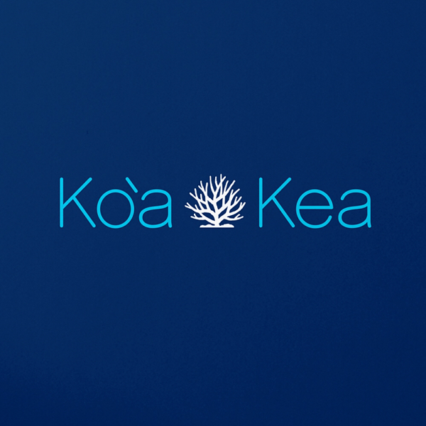 Since everyone liked the Koa Kea mark so much, here is some of the brand design that goes with it. Enjoy 😊 #logodesign #logos #wordmark #brandmark #graphicdesign #graphicdesigner #typography #vectorlogo #branddesign #designfirm #designagency #losangelesdesign #creativedirector #artdirector #designpassion #graphicpassion #graphicdesignpassion #colorpalette #brandrepsearch #branddesign #branddesigner #logomar #logomark
