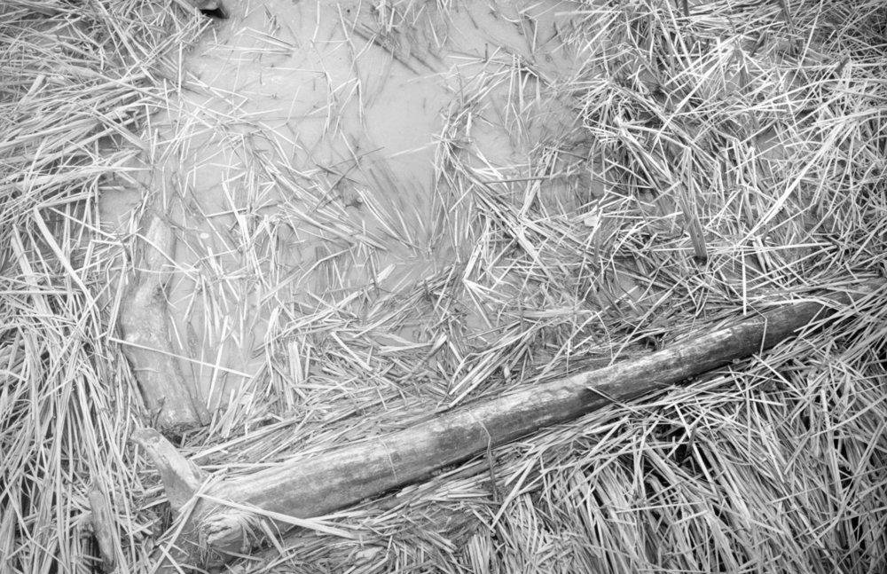 3-WinterBlades.jpg
