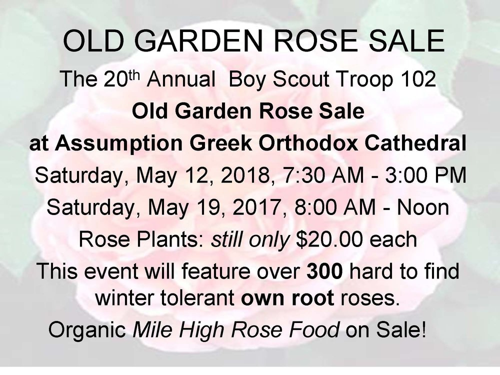 2018 OLD GARDEN ROSE SALE FLYER.jpg