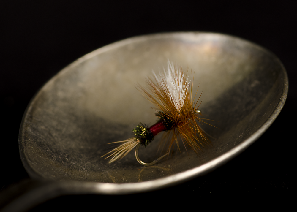 Fly in my Soup Spoon_CGC2171.png