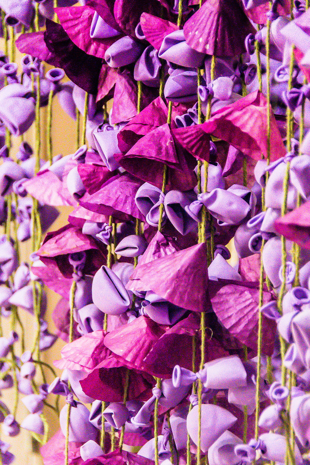 Purple Shop Display - Cottrell & Co. - CC1_0350.png