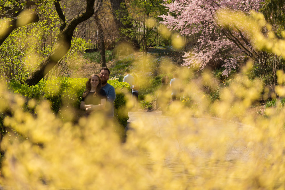 Central Park NYC Engagement photography