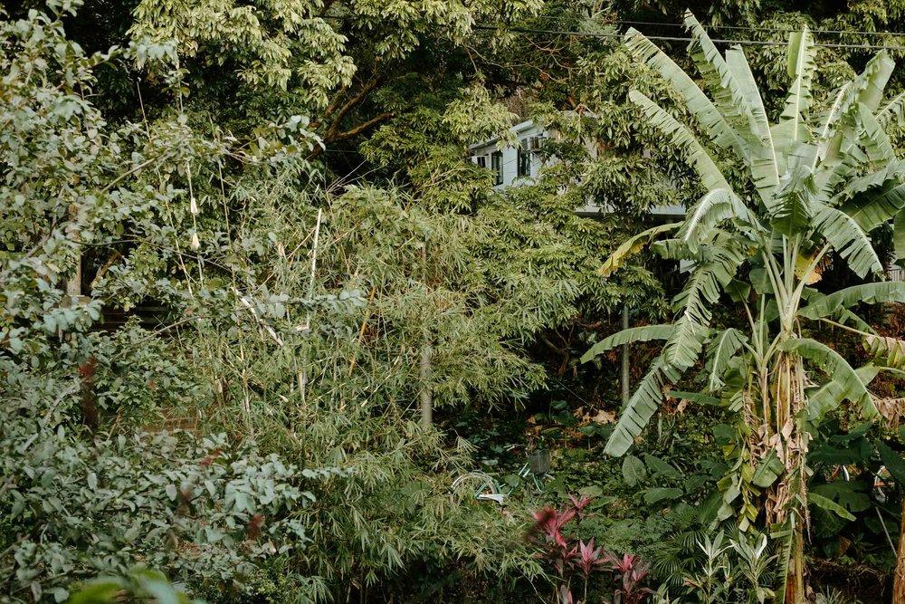 Richard-Tilney-Bassett-180114-170805.jpg