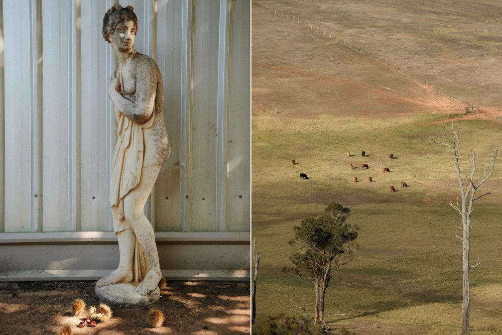 Richard-Tilney-Bassett-180404-pair-2.jpg