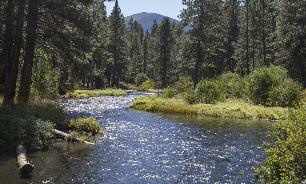 The Deschutes and McKenzie rivers flow nearby