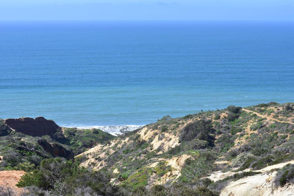 Torrey Pines, San Diego