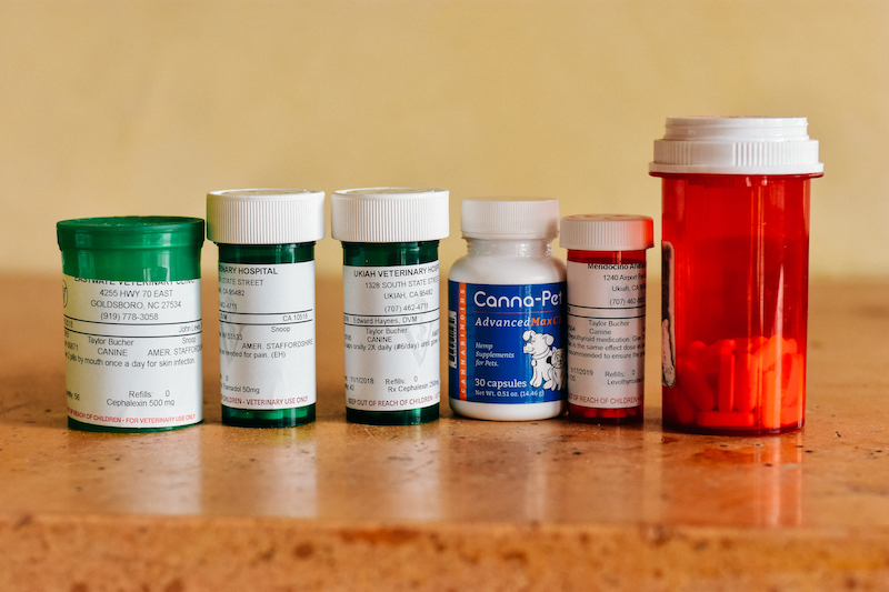 Snoop's current medications. He only takes three of these daily: one for arthritis, one for hypothyroidism, and CBD for his arthritis and overall health (it's a godsend! Snoop is happier and more mobile than ever since starting it!)