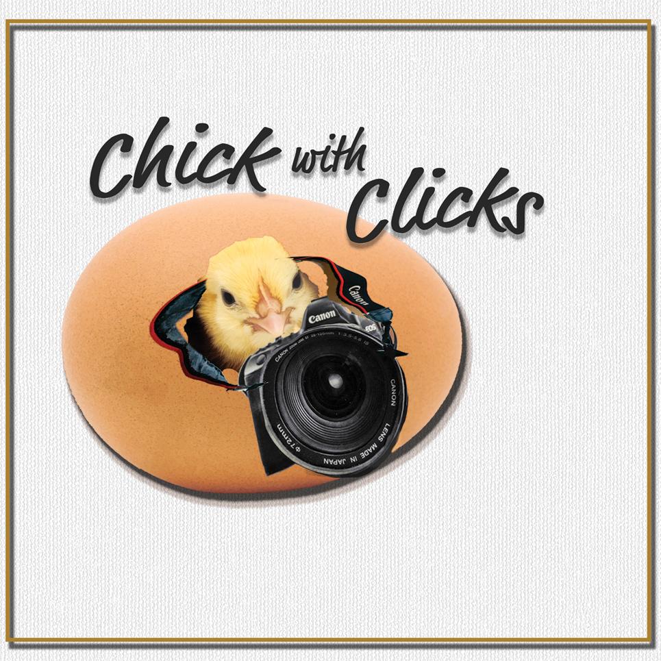 chickwithclickslogo.jpg