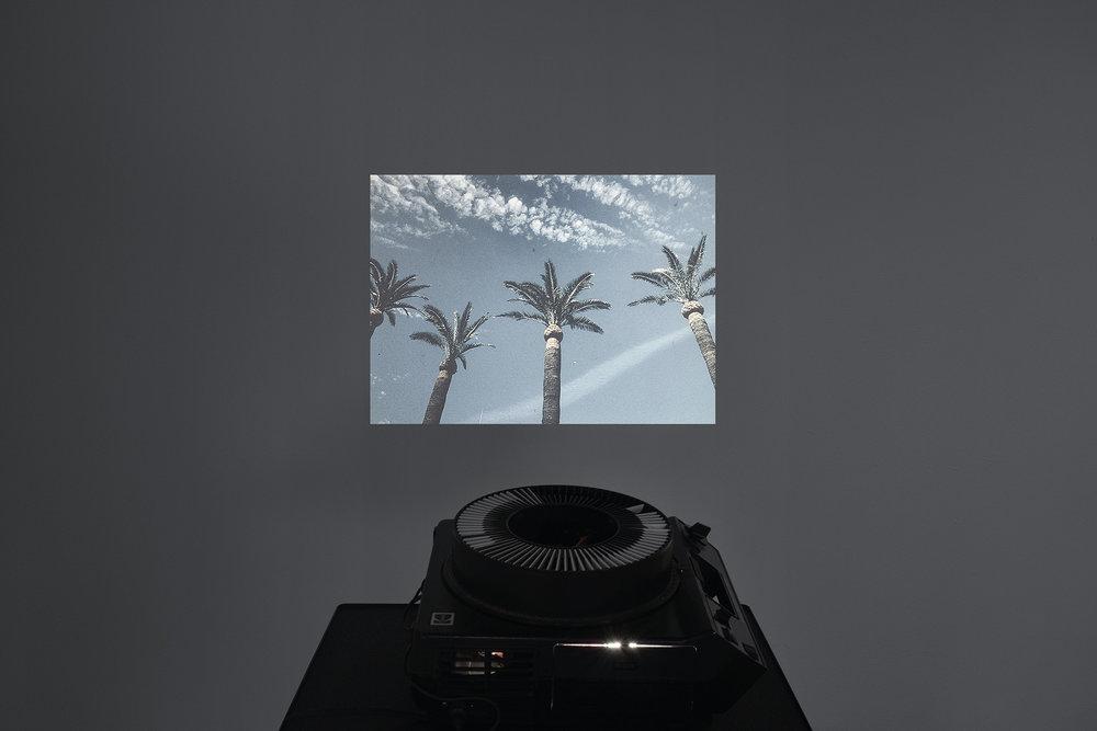 DSC04001_AdobeRGB.jpg