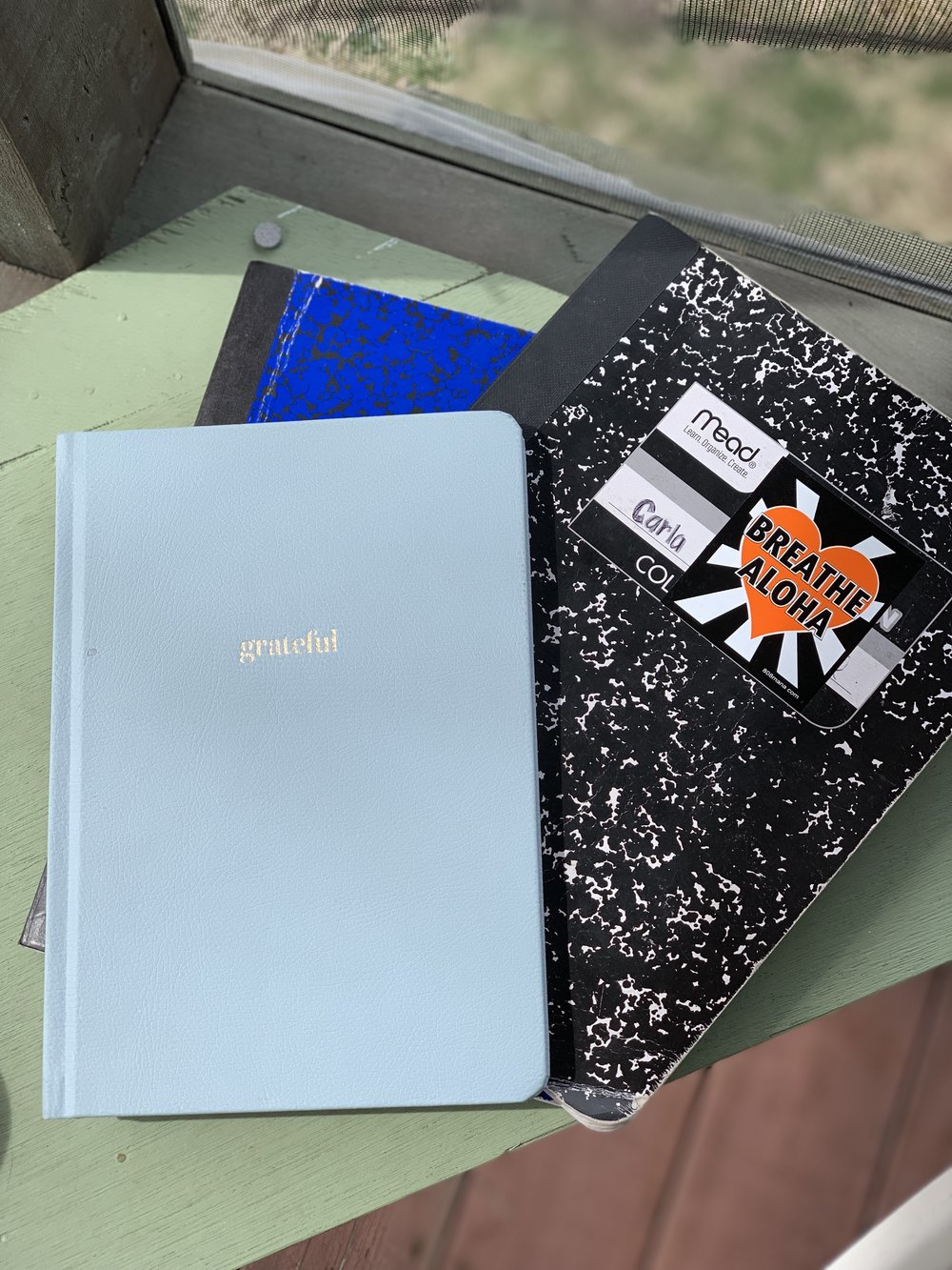 I've kept journals my whole life. I feel giddy when I see the worn and imprinted paper scribbled with my thoughts.