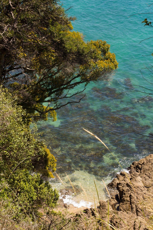 Abel Tasman-19.jpg