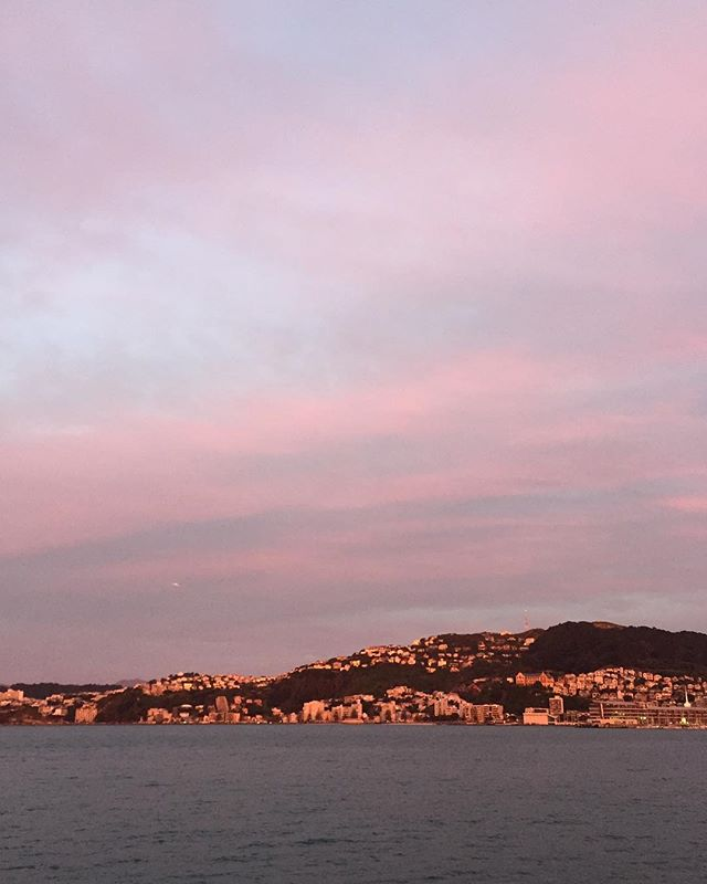 The world through rose tinted glasses #nofilter #wellington #sunset